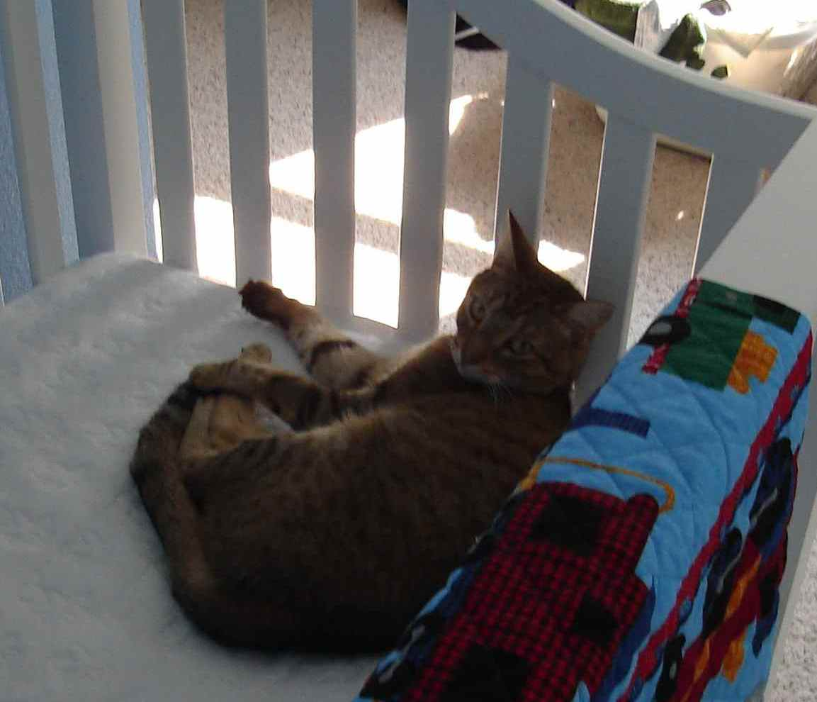 The cat's in the cra--er, crib